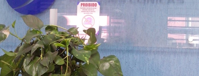 Laboratório Bonelli is one of Orte, die Camila gefallen.