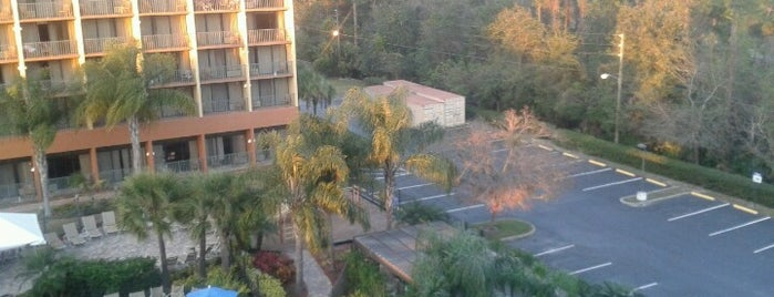 Holiday Inn & Suites Orlando SW - Celebration Area is one of สถานที่ที่ Cralie ถูกใจ.