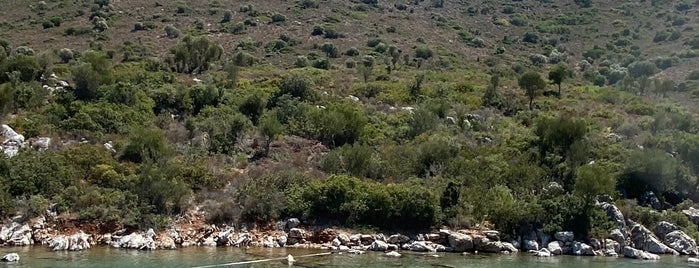 Ağıl Koyu is one of Beach&haven.