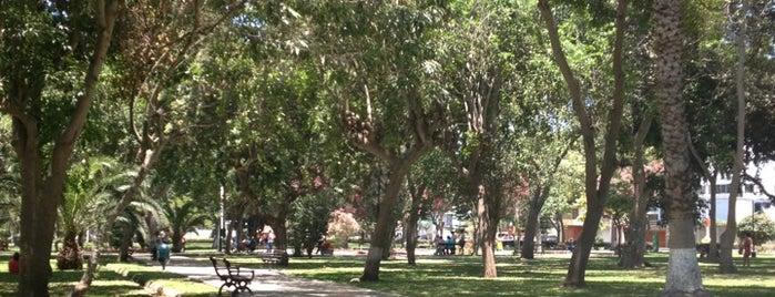 Parque Ramon Castilla is one of Parques con WiFi.