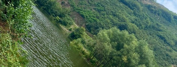 Sera Gölü Tabiat Parkı is one of Trabzon /Gidilecek Olan.