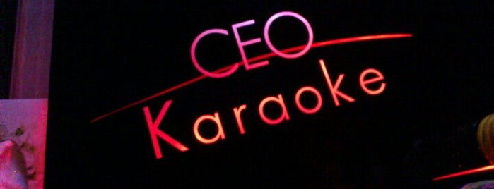 CEO Karaoke is one of Australia & New Zealand.