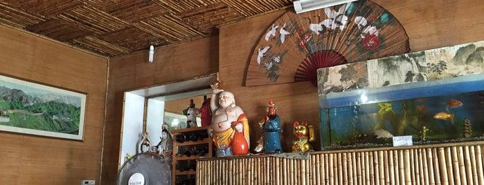 Zhang Hang (Casa de Bambú) is one of Restaurantes, Bares, Cafeterías y Mundo Gourmet.