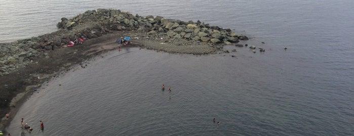 Mersin Plajı is one of Yunus'un Beğendiği Mekanlar.