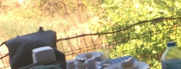 Efe Köy Kahvaltısı Ve Çay Bahçesi is one of Posti che sono piaciuti a Onur.