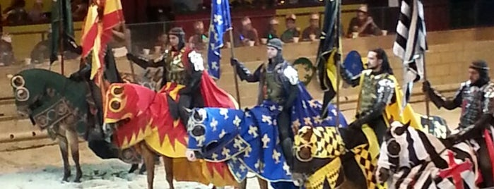 Medieval Times Dinner & Tournament is one of Lieux sauvegardés par Lily.