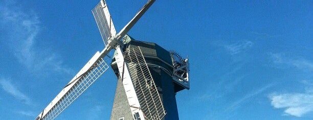 Murphy Windmill is one of Going Back To Cali...Again.
