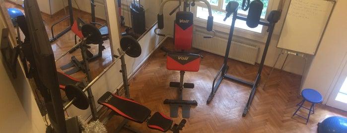Studio Sports Personal Training is one of Lugares favoritos de Deniz.