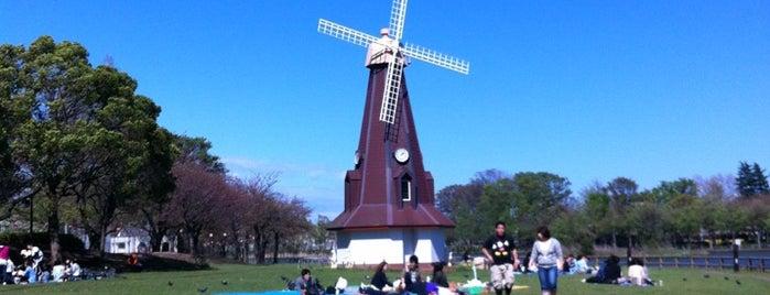 Ukima Park is one of Masahiro : понравившиеся места.