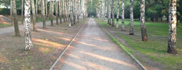 Парк XXII Партсъезда is one of Orte, die Taras gefallen.