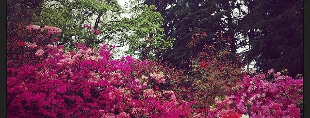 Winkworth Arboretum is one of Surrey Hill.