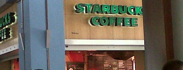 Starbucks is one of Locais curtidos por Thiago.