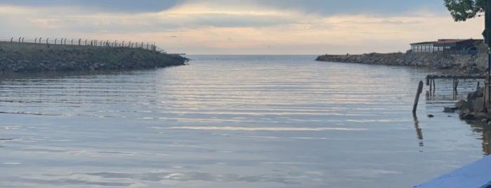 Riva Köy Balıkçısı is one of Posti che sono piaciuti a Canan.