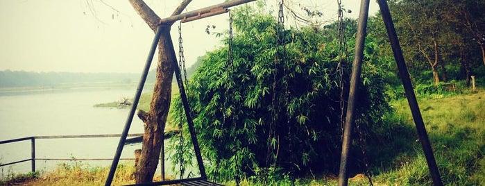 Jungle Villa Resort is one of Nepal.