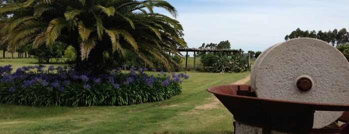 Punta Lobos is one of Uruguai.