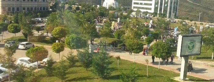 Kocaeli Üniversitesi Sosyal Tesisler is one of Barış ☀️ 님이 좋아한 장소.