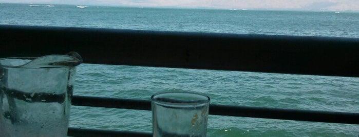 גלי גיל - מסעדת דגים is one of Posti che sono piaciuti a Alex.