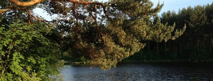 Озеро Вероярви (Кривое) is one of Искусство и природа!.