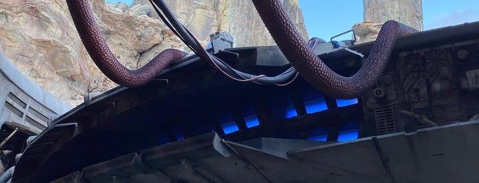 Millennium Falcon: Smugglers Run is one of สถานที่ที่ Fernando ถูกใจ.