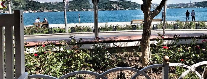 Baltalimanı Polis Evi is one of สถานที่ที่ Selim ถูกใจ.