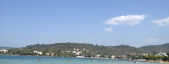 Zeytinlikuyu Plajı is one of Duygu: сохраненные места.