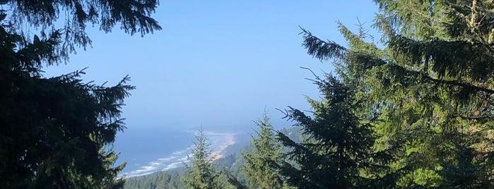 Cape Perpetua is one of Bay Area - Portland - Seattle.