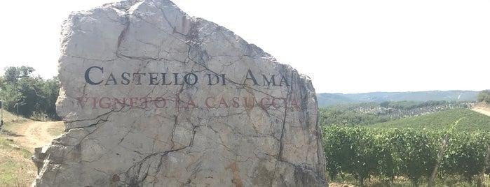 Castello di Ama is one of Wine World.