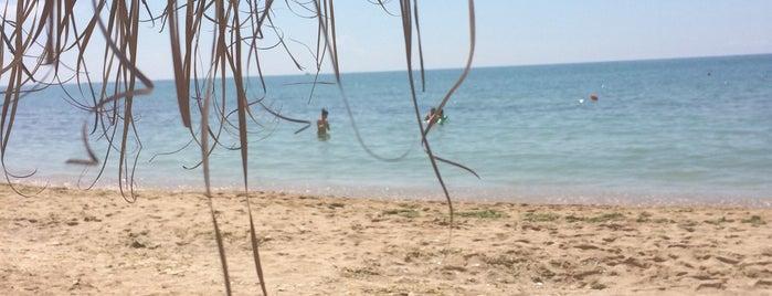 Topola Skies beach is one of Matei'nin Beğendiği Mekanlar.