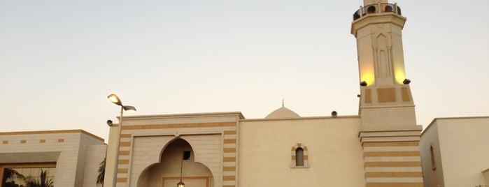 جامع أبي بكر الصديق is one of Lugares favoritos de Tawfik.