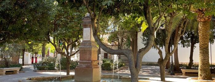 Plaza Duquesa De Parcent is one of Spain.