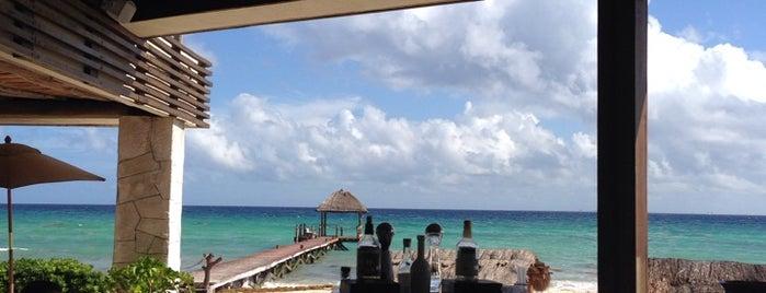 Viceroy Riviera Maya is one of Orte, die Sagy gefallen.