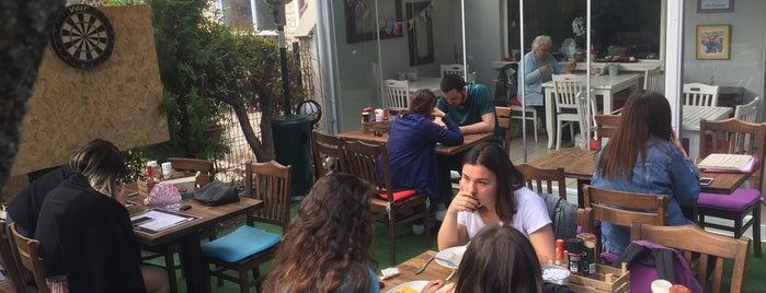 Holland Lop Cafe is one of Berke : понравившиеся места.