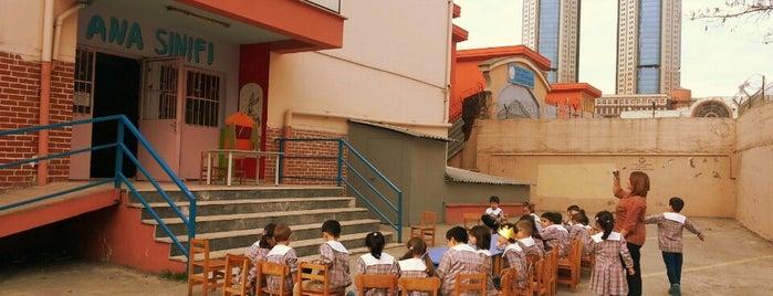 Esenler Kız Teknik ve Meslek Lisesi is one of Bayrampaşa Çiçekçi.