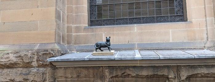 Statue of Trim the Cat is one of Australia - Sydney.