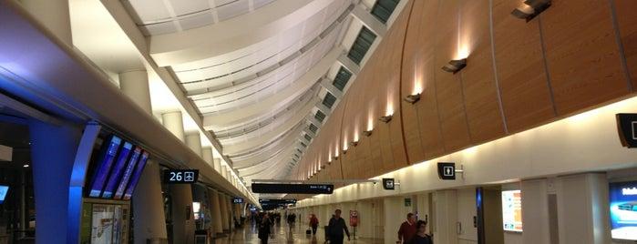 Norman Y. Mineta San Jose International Airport (SJC) is one of สนามบินนานาชาติ (1).