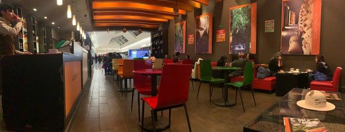 Bola De Oro is one of Cafés CDMX ☕ 🇲🇽.