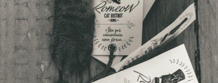 Romeow Cat Bistrot is one of Mangiare vegan a Roma.