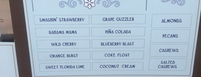 Florida Snow Company is one of Disney Springs.
