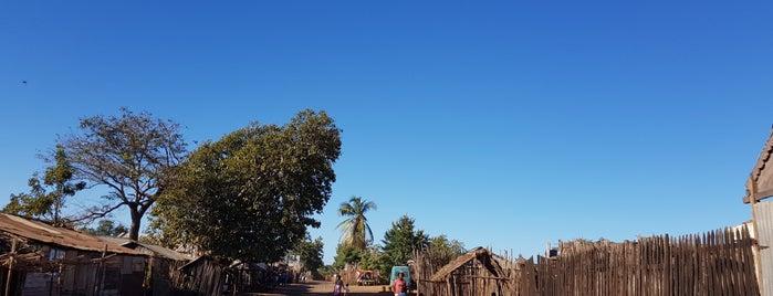 tsiribihina is one of Madagascar.