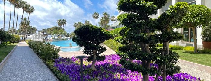 Barut Acantus&Cennet Hotel is one of Posti che sono piaciuti a Gizem.
