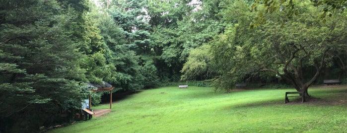 Potomac Overlook Regional Park is one of Posti che sono piaciuti a Bryan.