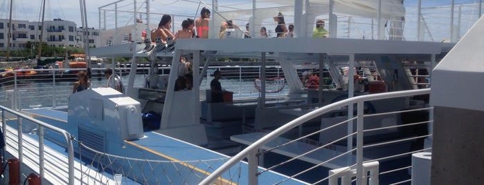 Fury Snorkeling Catamaran is one of Key West Bests.