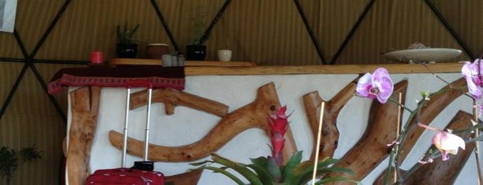 Cascada De Las Animas Lodge Suites is one of Posti che sono piaciuti a Felipe.