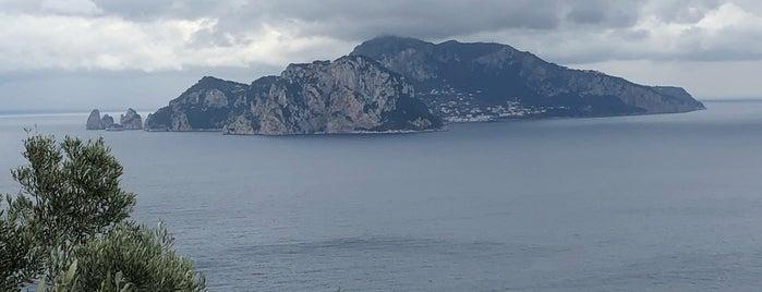 Punta della Camponella is one of #invasionidigitali 2013.