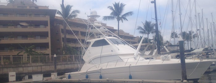 Paradise Marina & Yatch Club is one of Locais curtidos por Hilda.