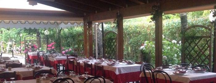 Ristorante Il Cacciatore is one of Ascoli Piceno.