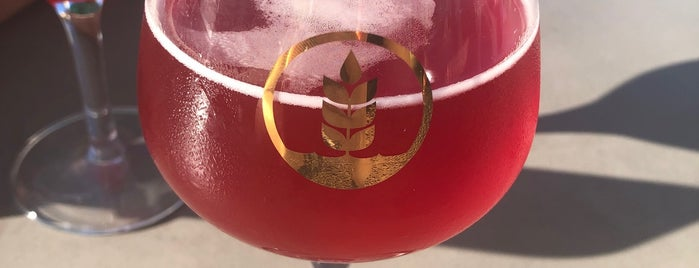 Pure Project Brewing is one of San Diego.
