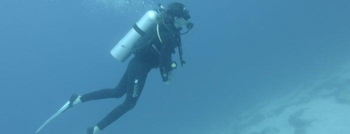 Heybeli Dive Spot is one of Kaş & Kalkan.
