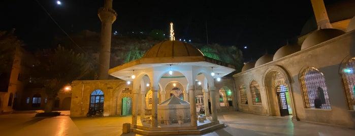 Mevlid-i Halil Camii is one of Şanlıurfa.