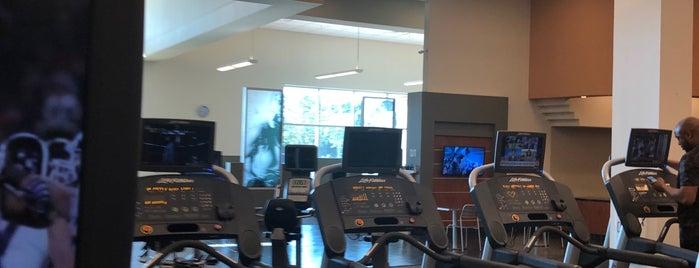 LA Fitness is one of Posti che sono piaciuti a Ashley.